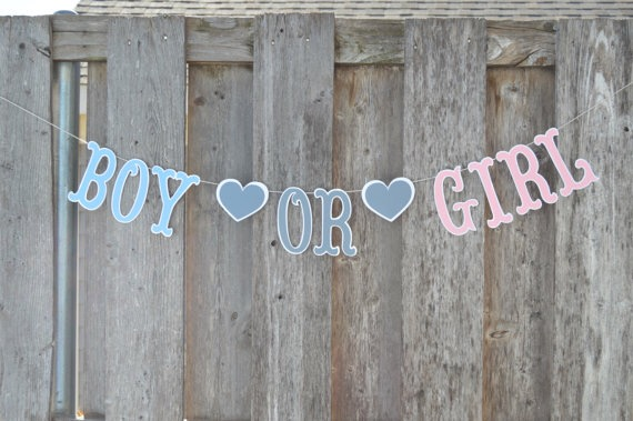 Gender Reveal Ideas.. – Our Chaotic Mess